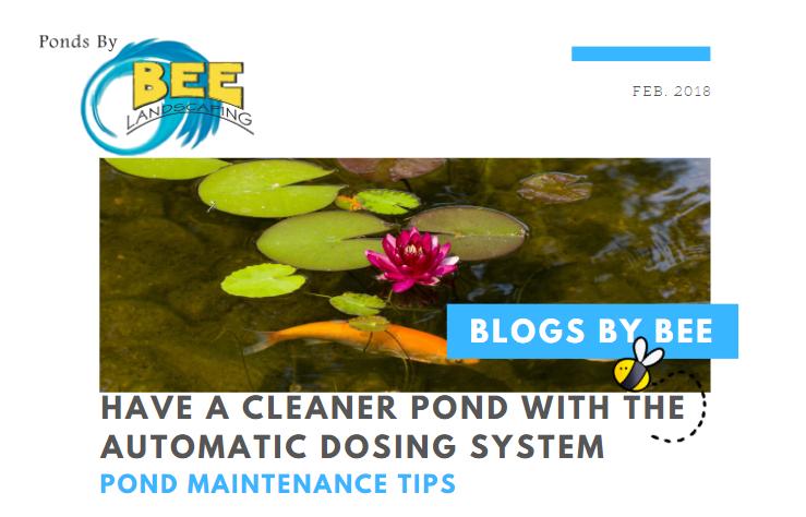 dose system blog