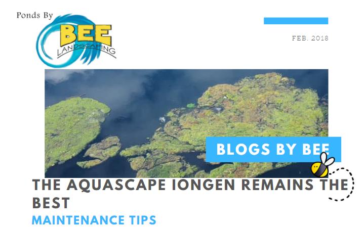 iongen blog
