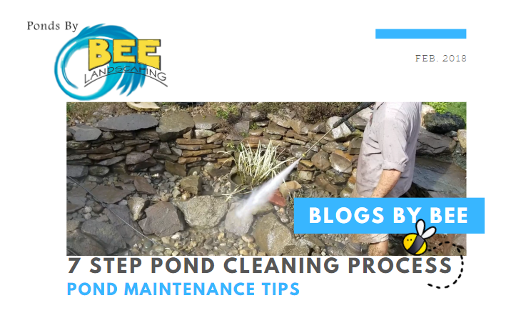 pond cleaning blog