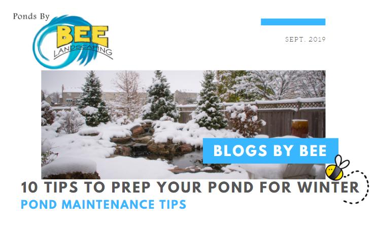 winter tips blog