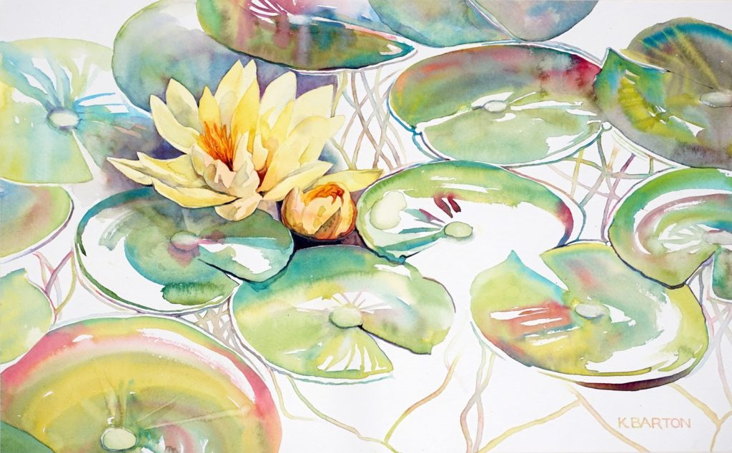 Water Lily 8 - Kirsten Barton