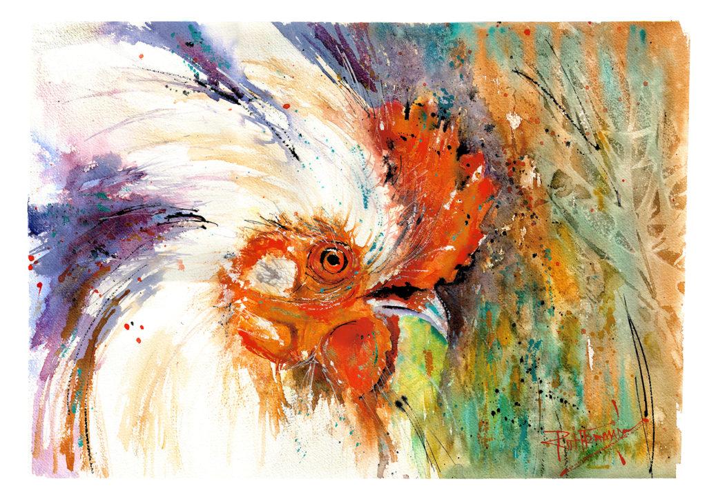 White Chicken - Ruth  Forman