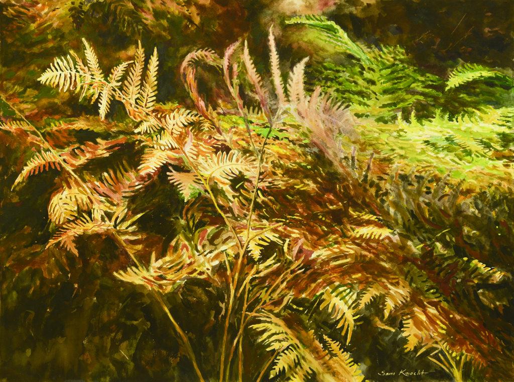 Fading Ferns - Sam Knecht
