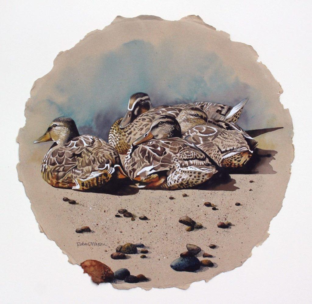 Robin Maxon - Sitting Ducks