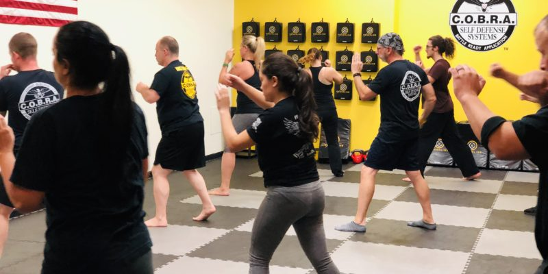 cobra self defense student class pucture