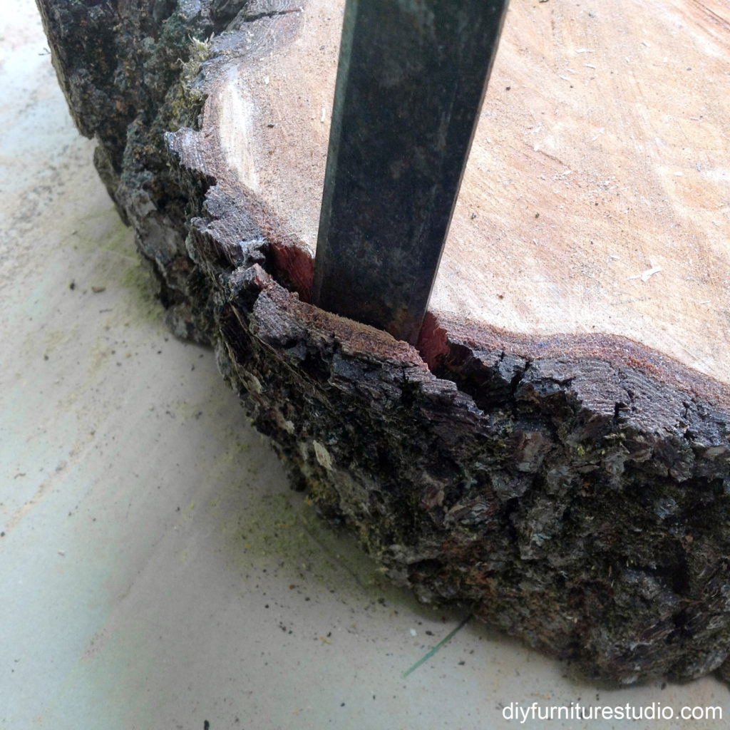 tree slice stump bark removal