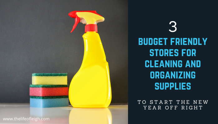budget friendly stores for cleaning products
