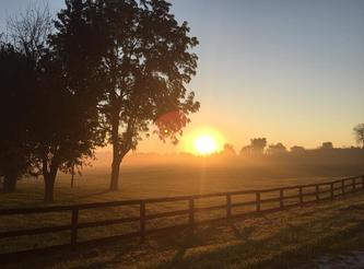Lakeside Arena Sunrise