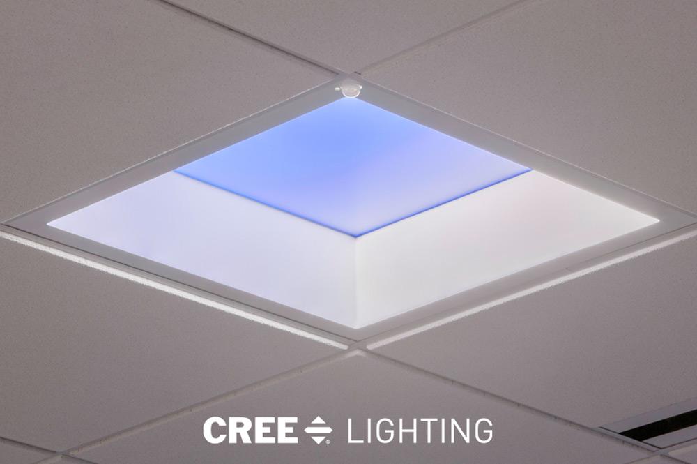 cree lighting window