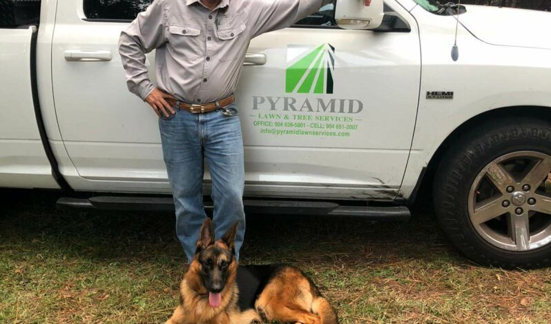 Spike Pyramid Lawn Services new mascot