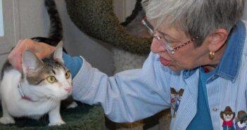 Eglin Air Force Base Pet Welfare, Niceville FL