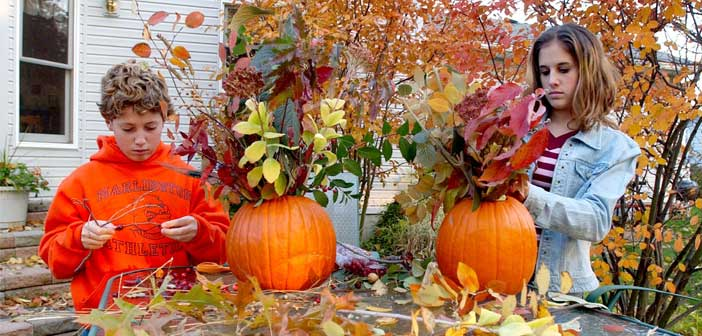 Thanksgiving decorations, Niceville FL