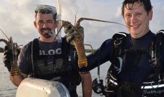Florida spiny Lobster divers