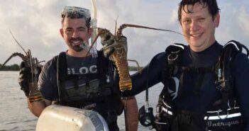 Florida spiny Lobster divers