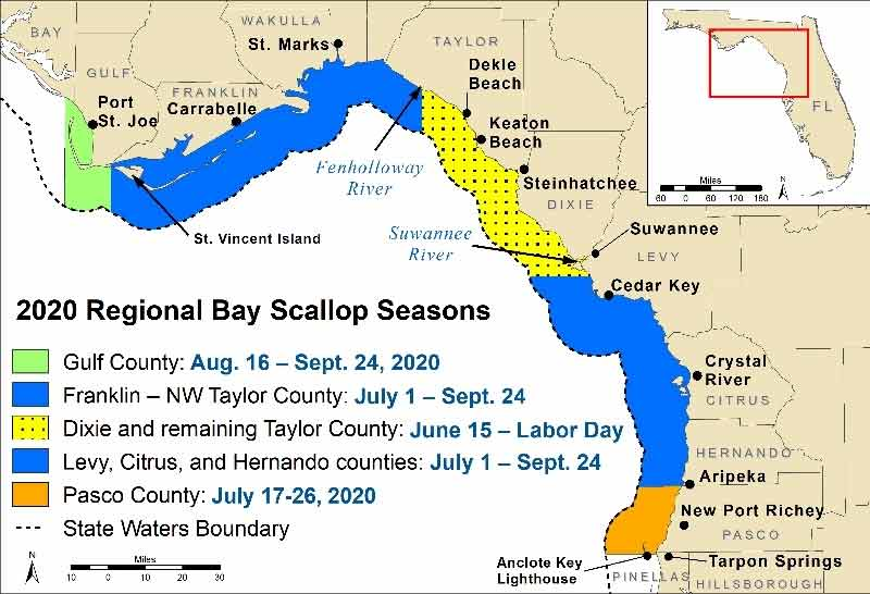 2020 florida bay scallop map