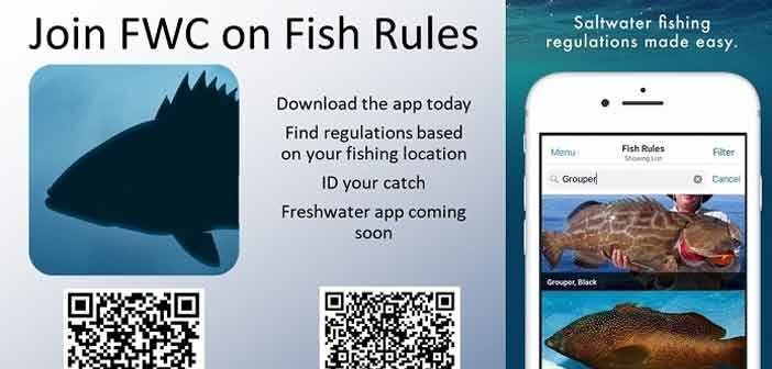 florida fishing id regulations app fwc