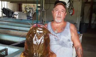 record flathead catfish yellow river florida