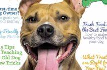 dog harmony magazine