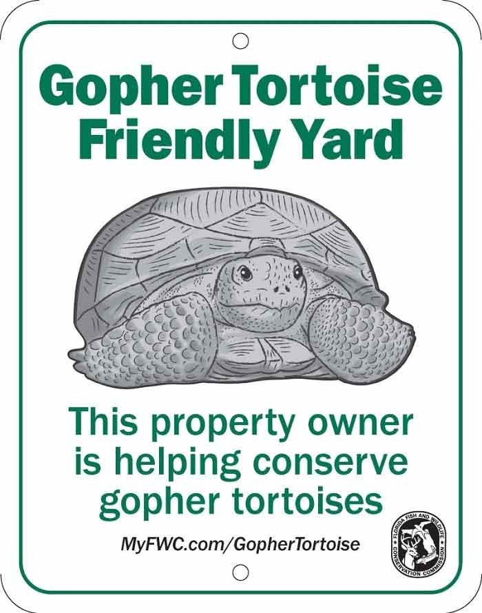 Florida Gopher Tortoise Friendly Yard Recognition Program