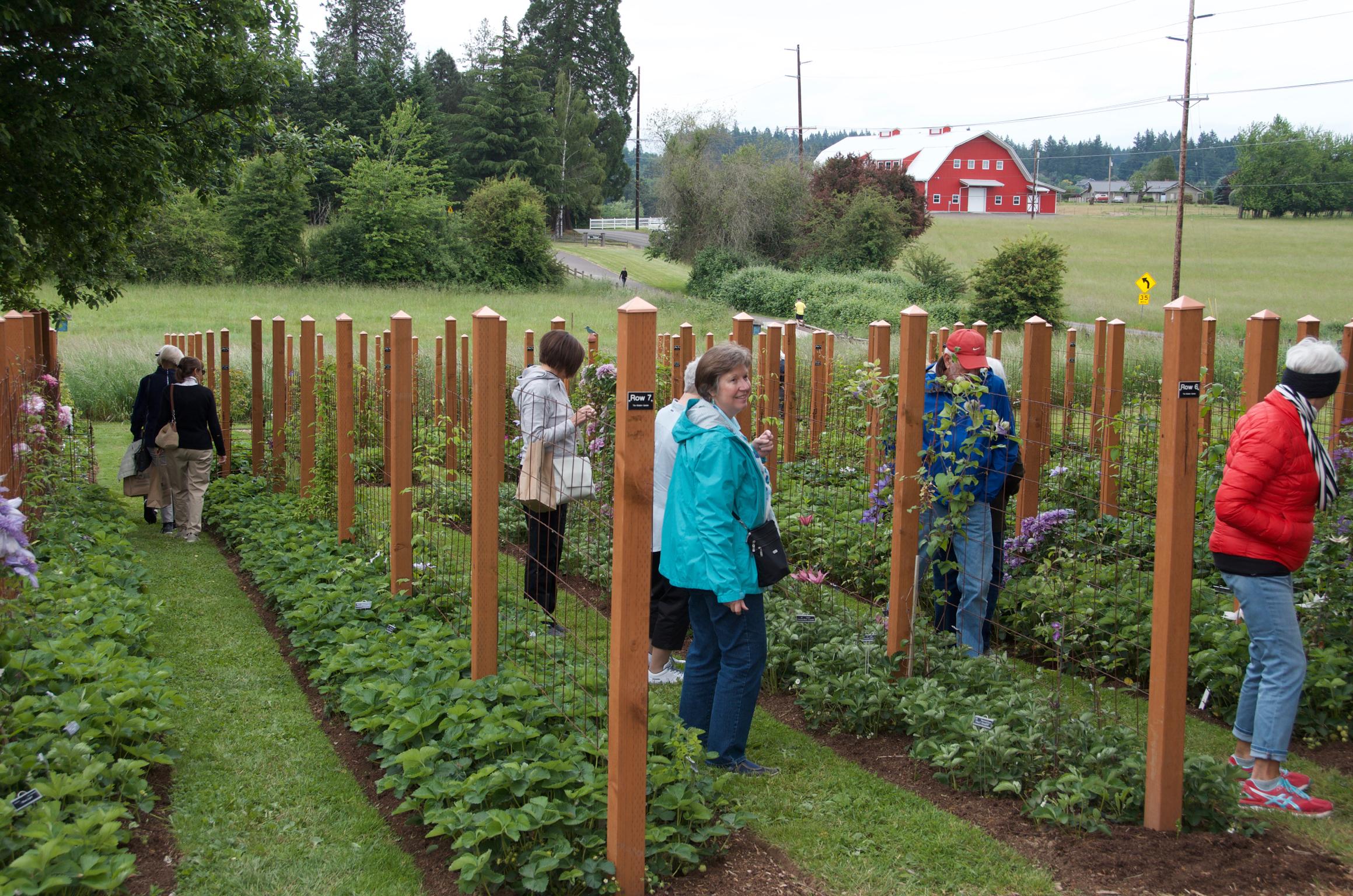 Clematis garden tours feature tours, speakers, silent auction