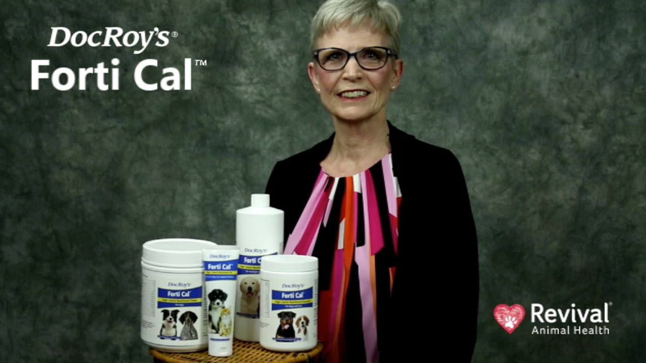 Calorie supplement for cats,dogs, and horses.