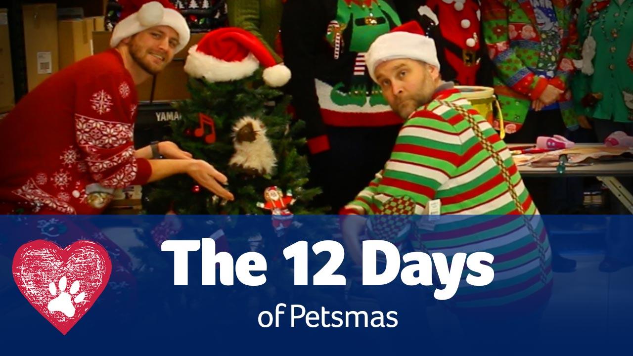 12 Days pf Petsmas