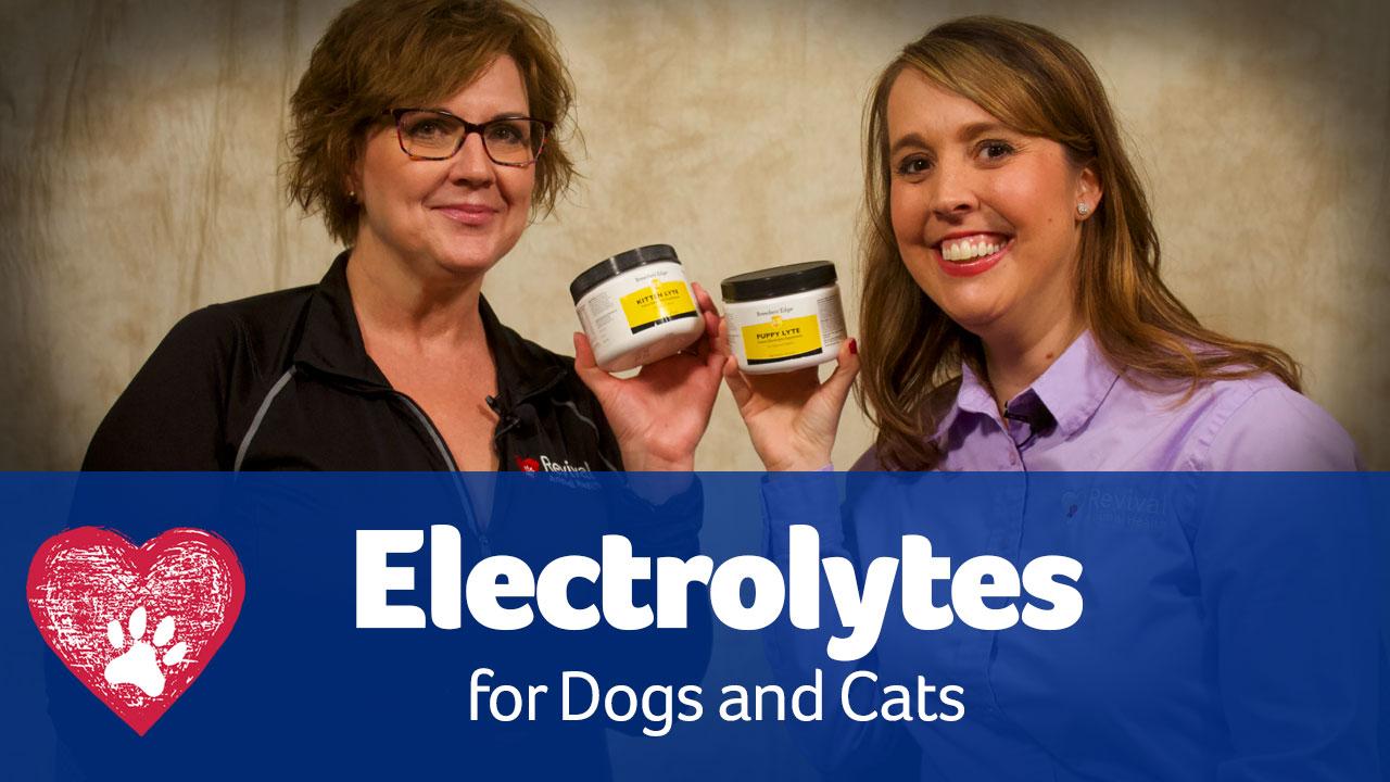 pet electrolytes