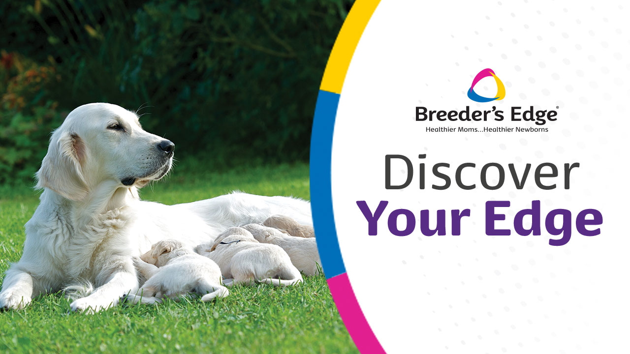 Breeder's Edge Discover Your Edge