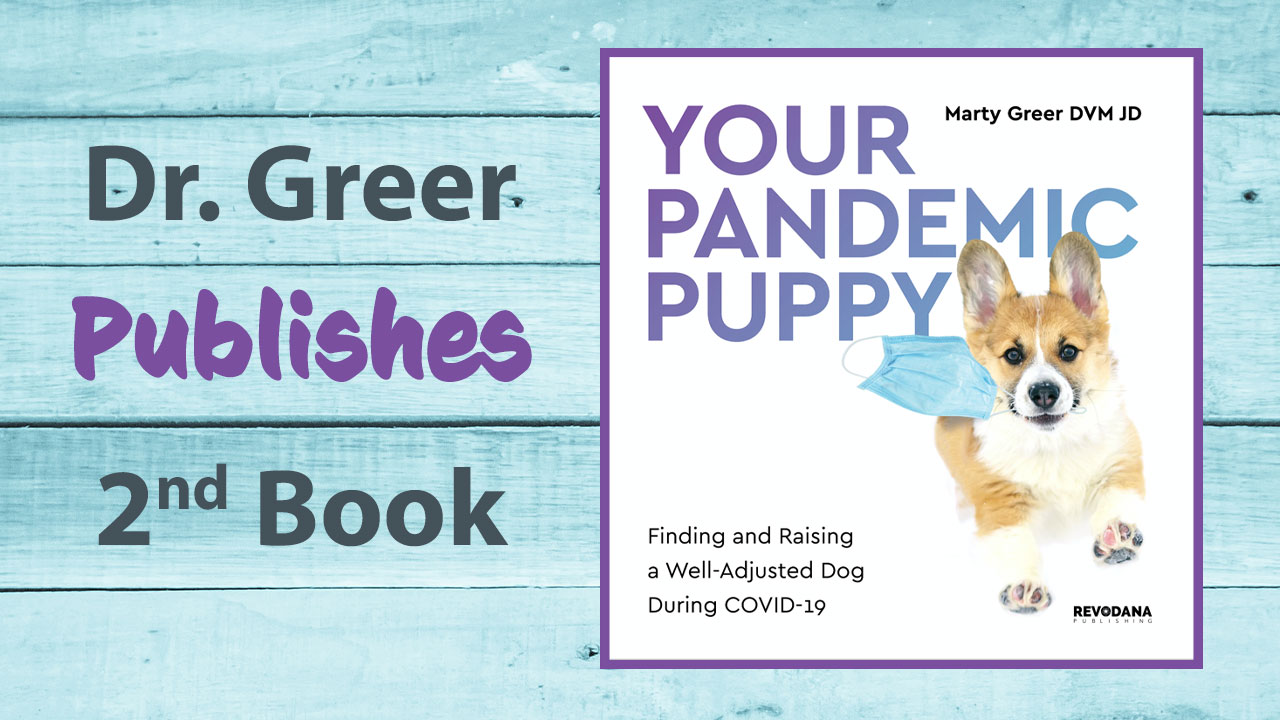 Pandemic Puppy Book