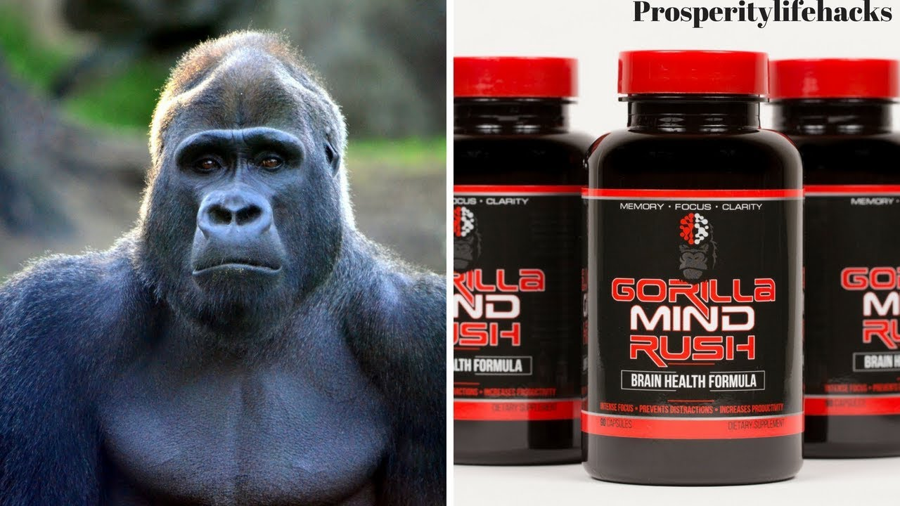 Gorilla Mind Rush Review