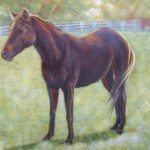 "Black mare 30""x 40"" Acrylic on canvas"