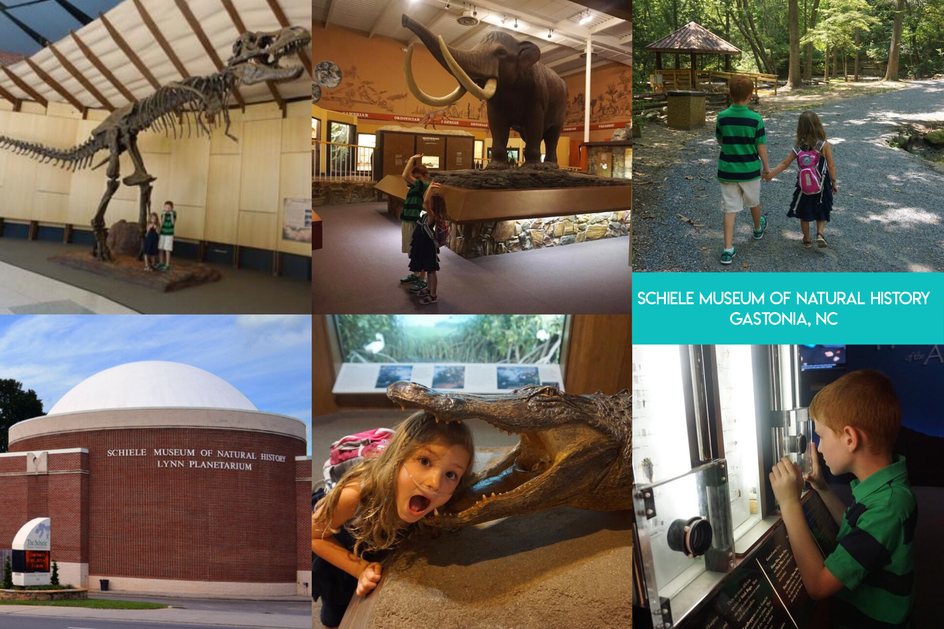 Learn the secret to saving thousands of dollars on visiting fun and educational places all across the nation, and even internationally, including zoos, aquariums, children's museums, and science museums with the magic of reciprocal museum membership.