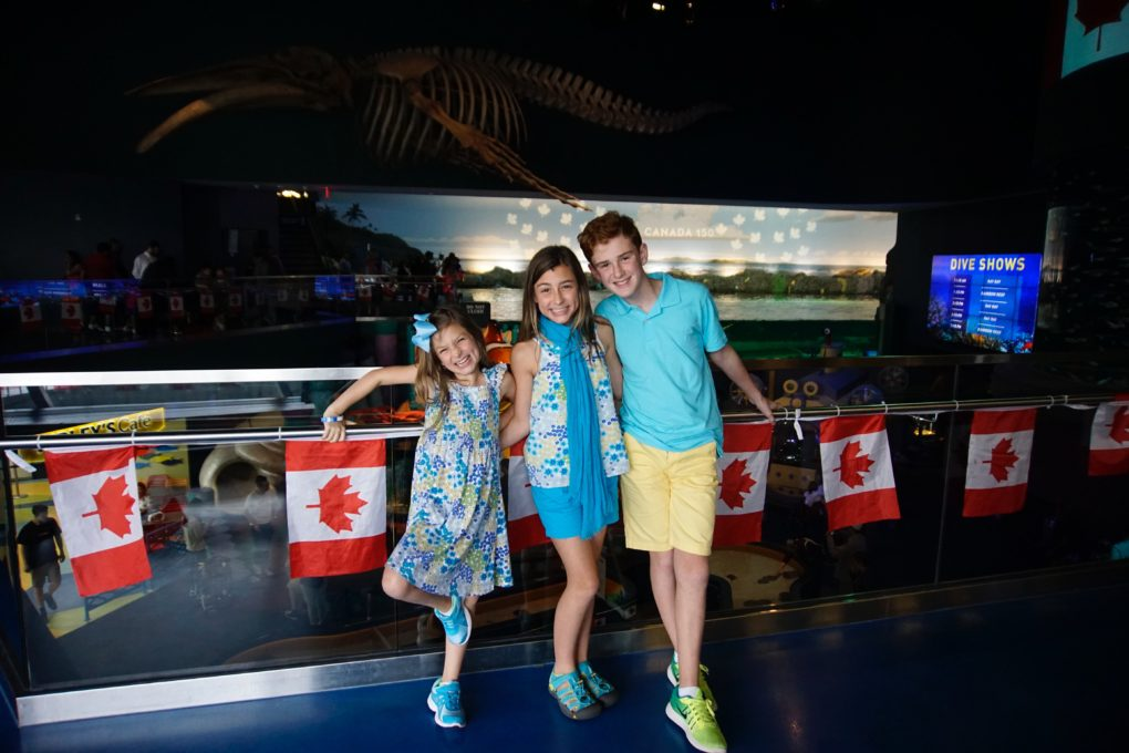 Planning a trip to Toronto with kids? Canada's largest city has so much to offer. Here are 5 fun things to do with kids in Toronto using CitiPASS.