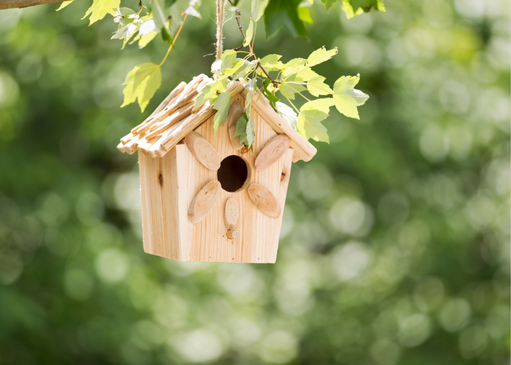 Wooden bird feeder hanging from tree. Make bird feeders out of pine cones, peanut butter and bird seed or use a ready-made bird house craft kit. Then head to Audubon.org to identify them. - Safe Summer Bucket List – 100 Ways to Have Fun This Summer While Social Distancing