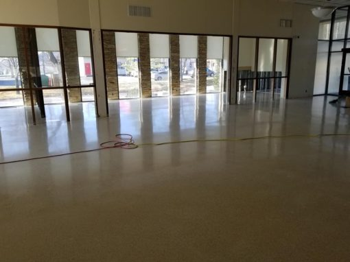 Terrazzo Floor Restoration Fenton, MO