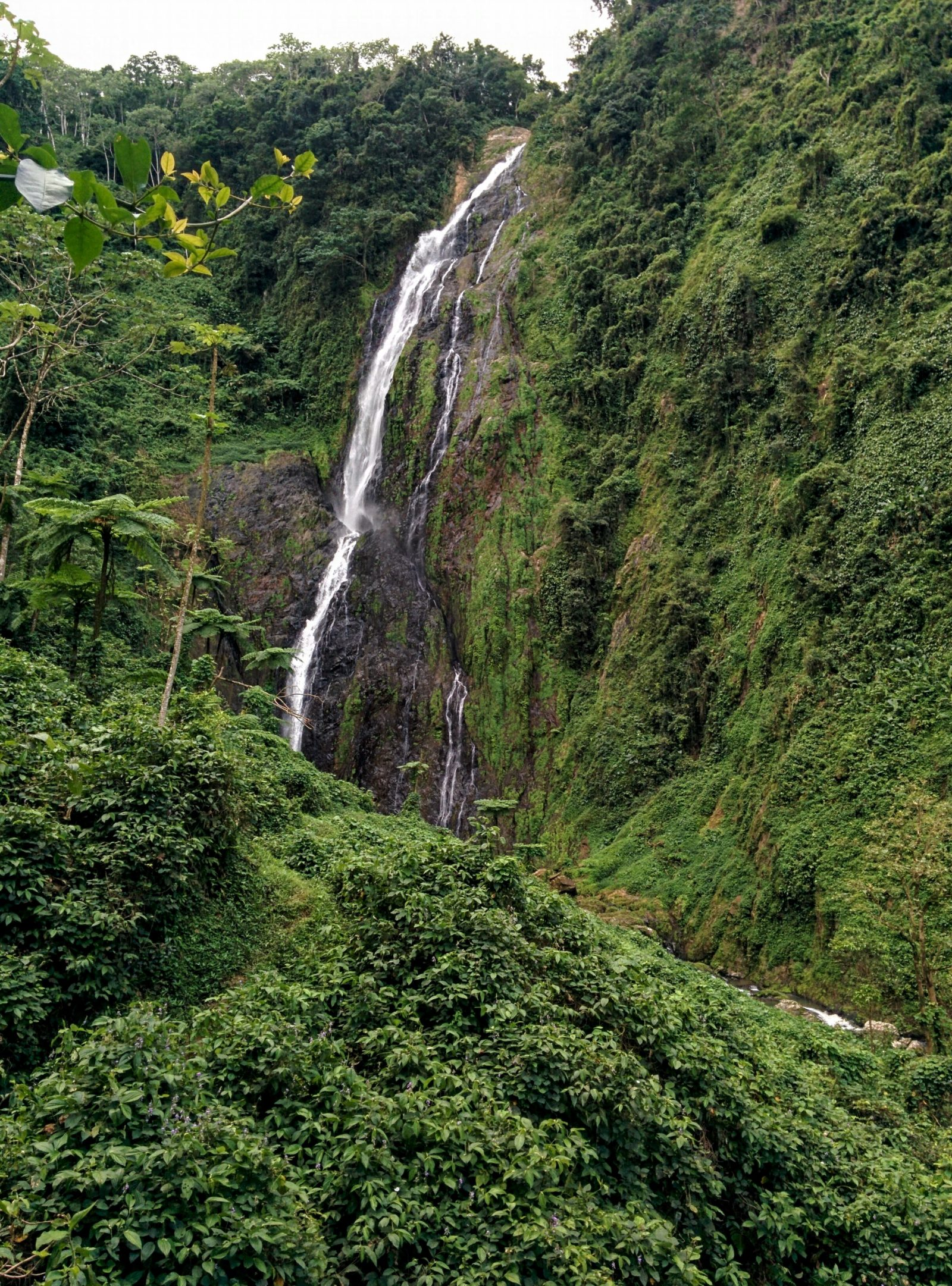 waterfalllajalda