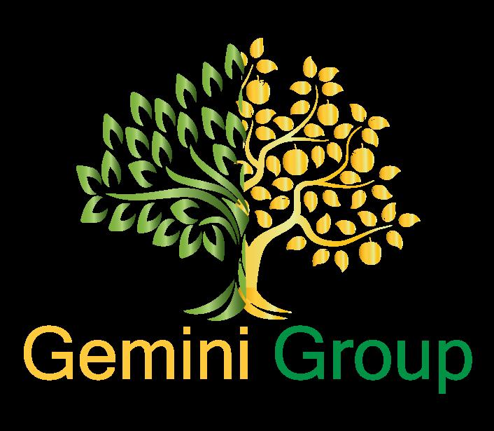 Gemini Group Mexico