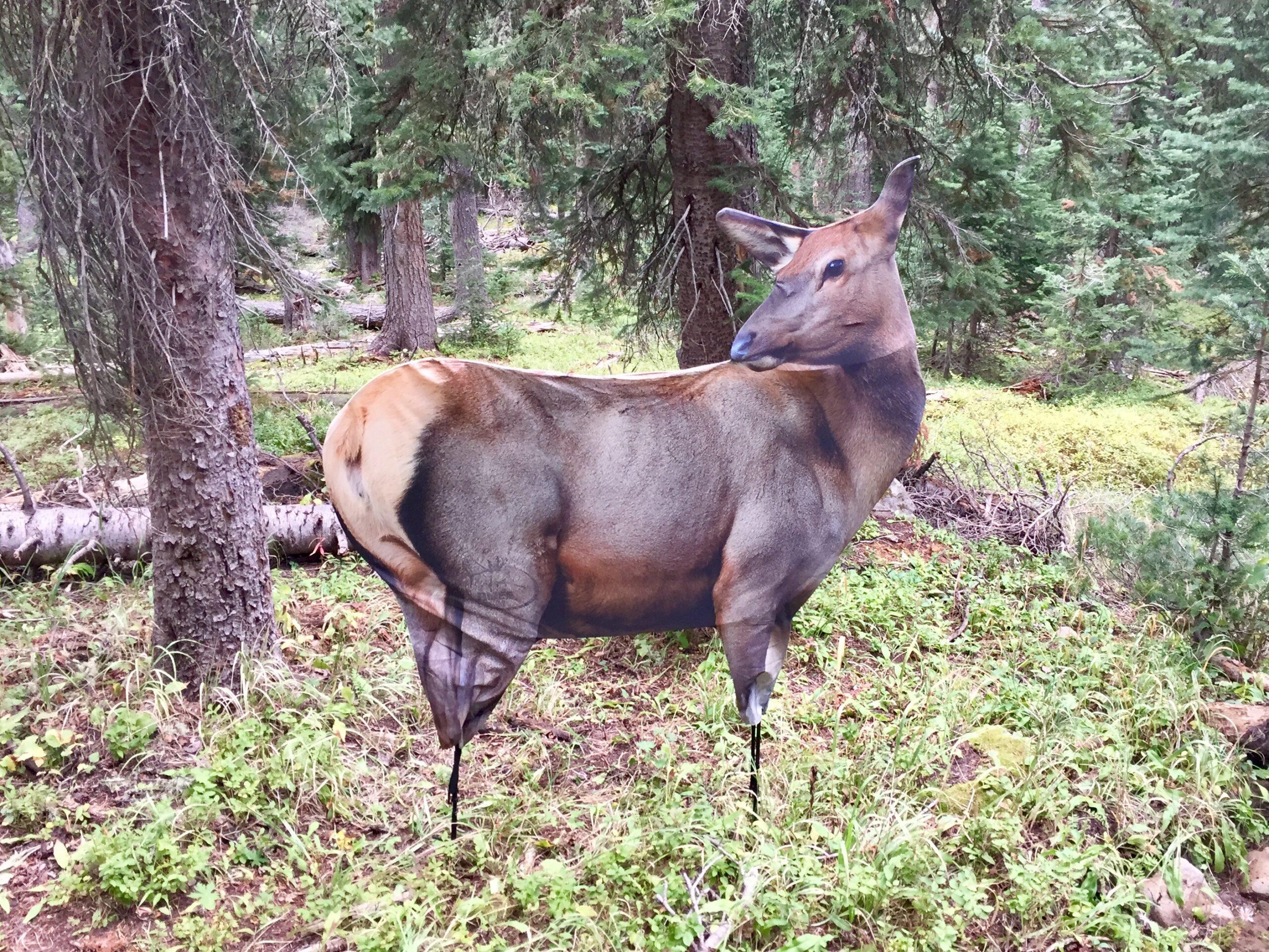 Cow Elk Decoy
