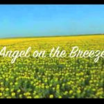 Angel on the Breeze by Tony Harrison