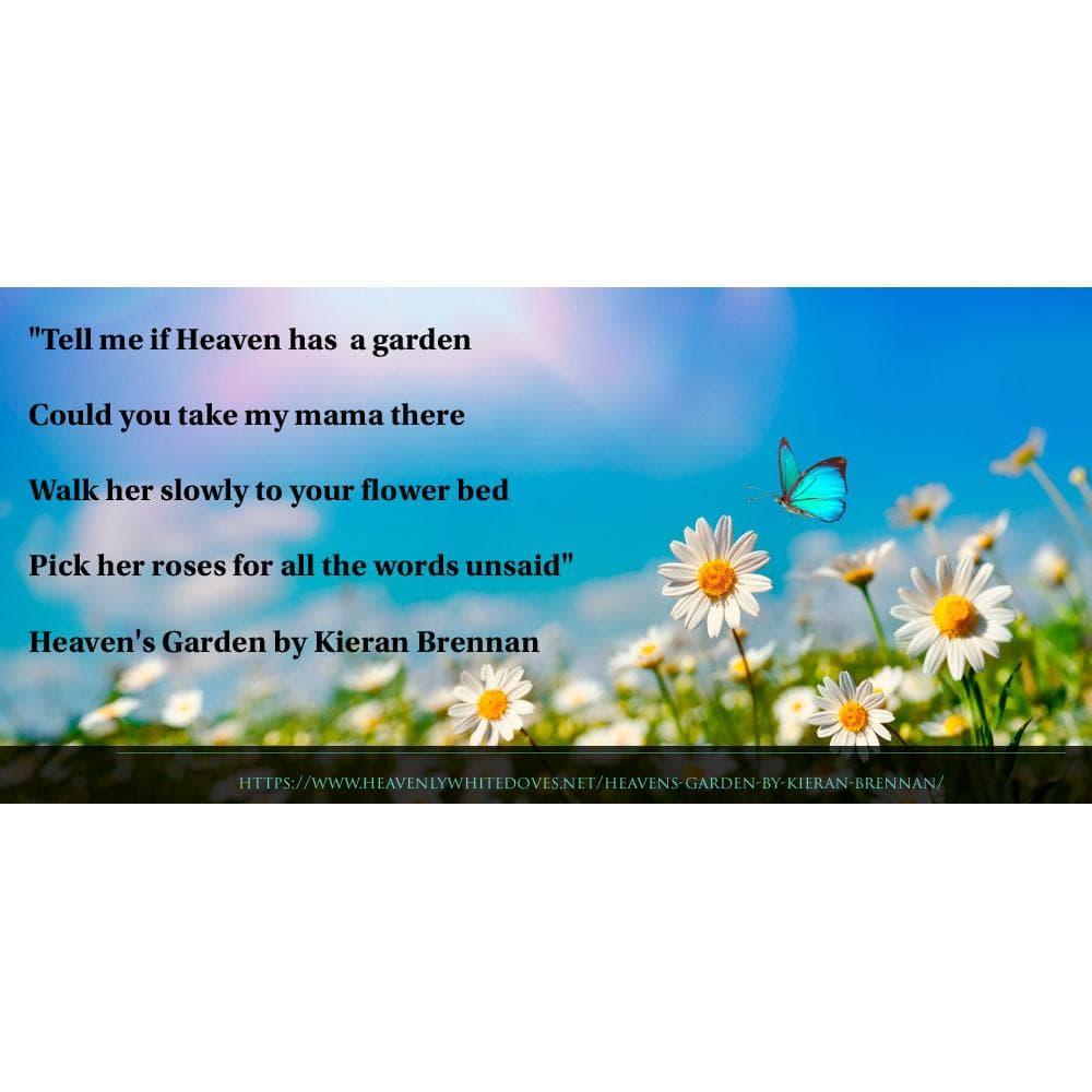 Heaven's Garden by Kieran Brennan
