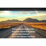 Look For Me In Rainbows by Vicky Brown