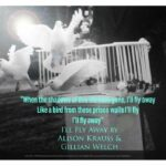 I'll Fly Away by Alison Krauss and Gillian Welch
