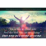 Free Bird by Lynyrd Skynyrd