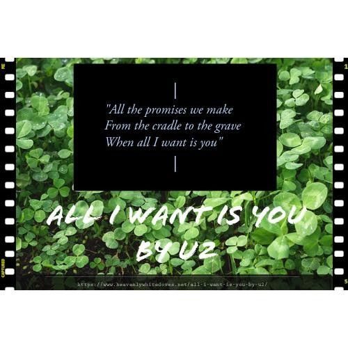 All I Want Is You by U2