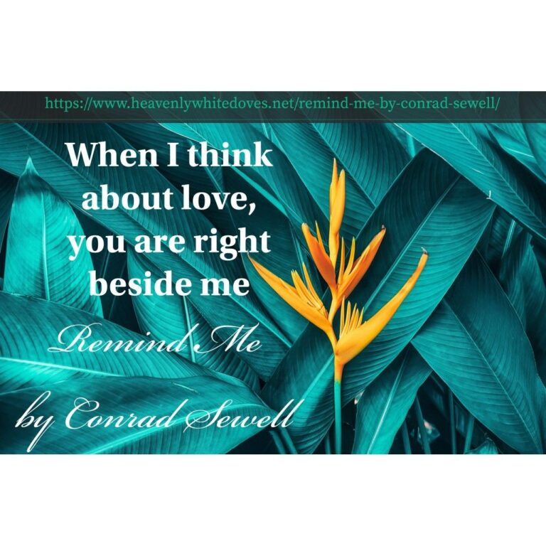 Remind Me by Conrad Sewell