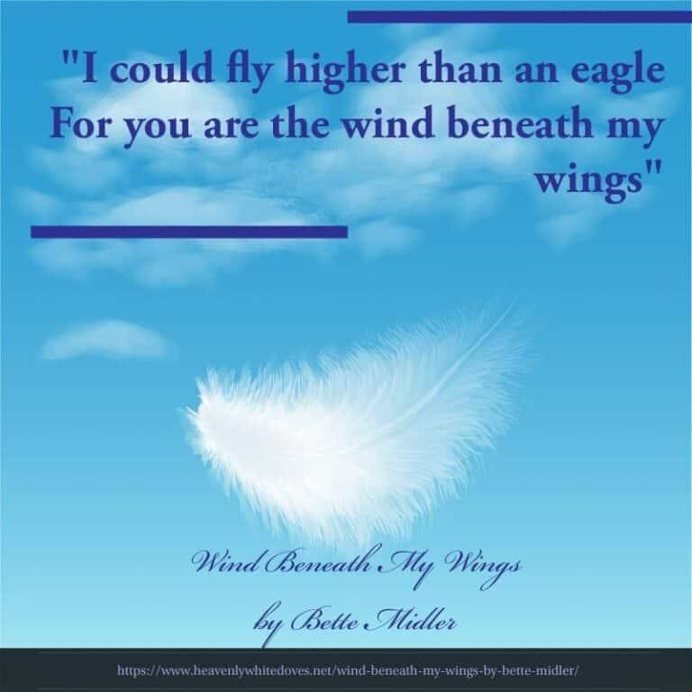 Wind Beneath My Wings by Bette Midler
