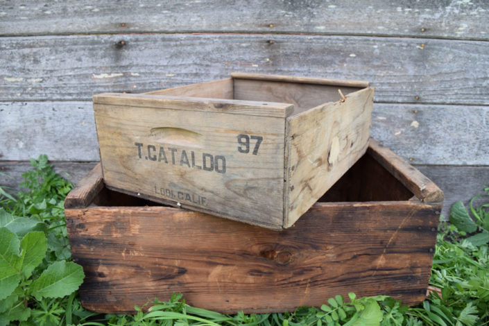 Vintage farm crates-various sizes available