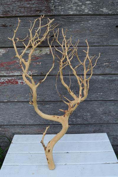 Sandblasted Manzanita branches-large and small