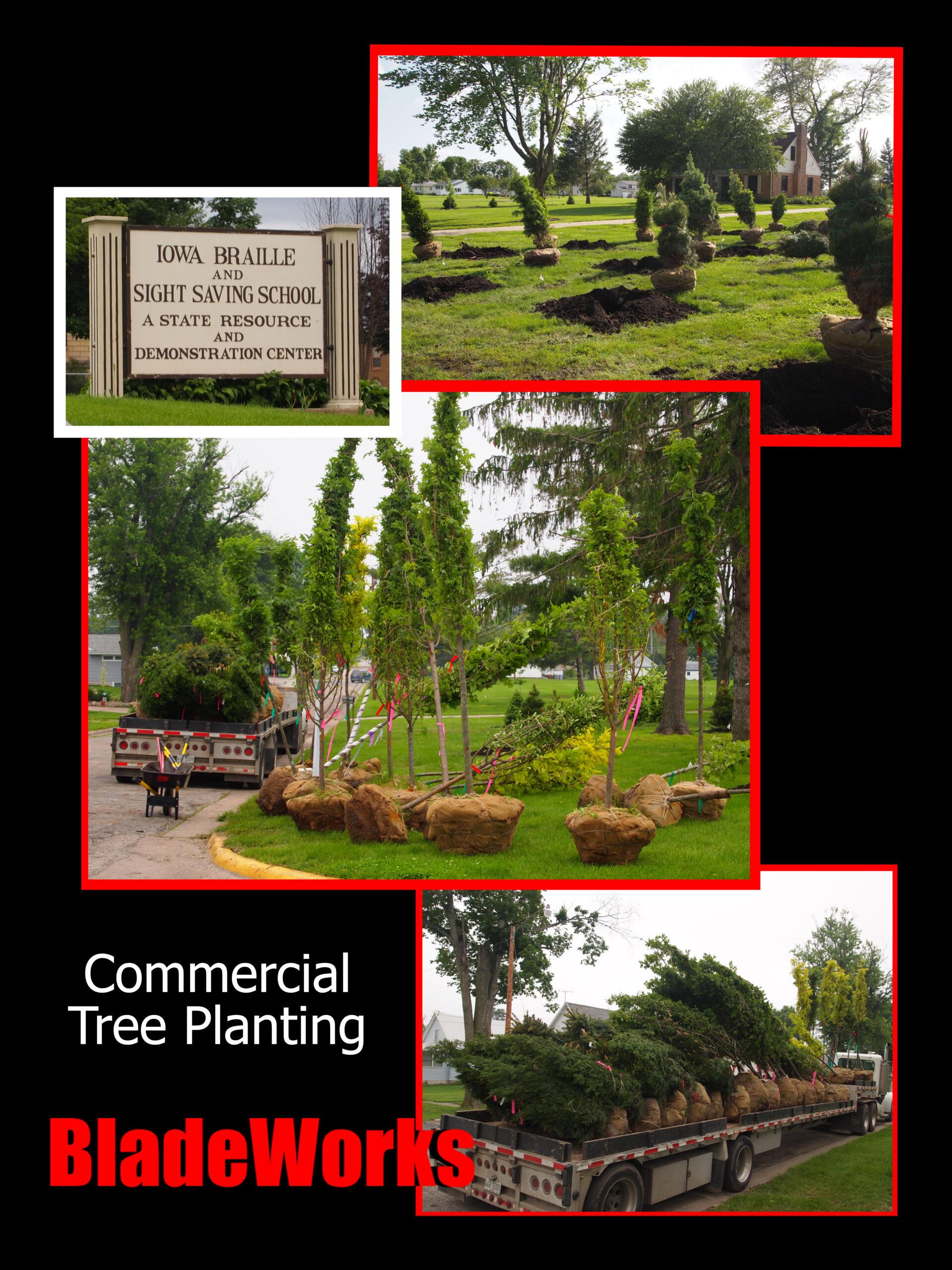 BladeWorks Tree Planting