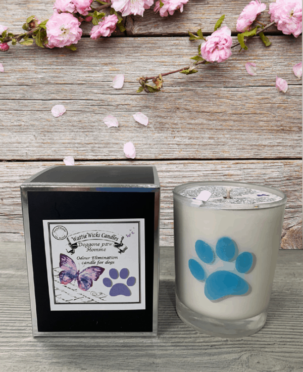 Doggone paw Homme scented candle